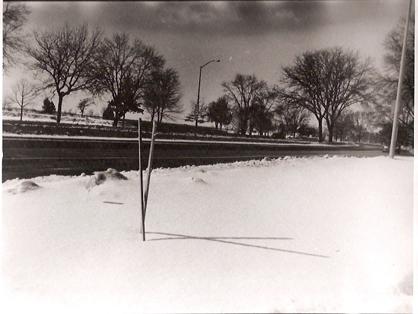 Shadow-Cross-in-Snow