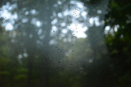 Condensation Info Booklet   Expert Windows  amp  Doors