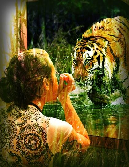 Photo-6---South-China-Tiger-WEB