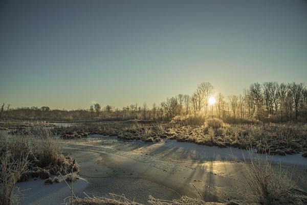 frozen_creek1
