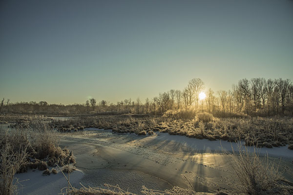 frozen_creek1